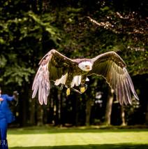 Bruiloft Robert en Hanneke 2 – Scheffelfotografie