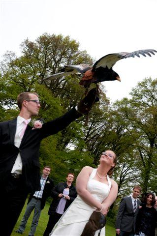Huwelijk van Martijn & Esther op 12 mei 2010 – Foto 1