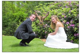 Nicole en Sander Koebrugge – Foto 1